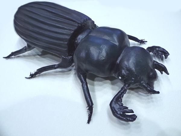 accessoire-spectacle-scarabe-noir